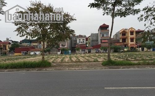Bán đất đấu giá Việt Hưng xây biệt thự 1000m2 MT:50m giá 50tỷ