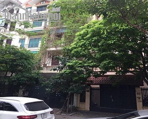 Cho thuê nhà liền kề Trung Yên 110m2x4T MT:5,3m TN giá 30tr/tháng